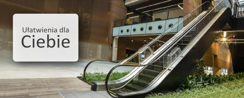 schody i chodniki ruchome techwind